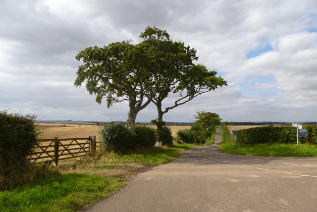 Road junction near Grindon