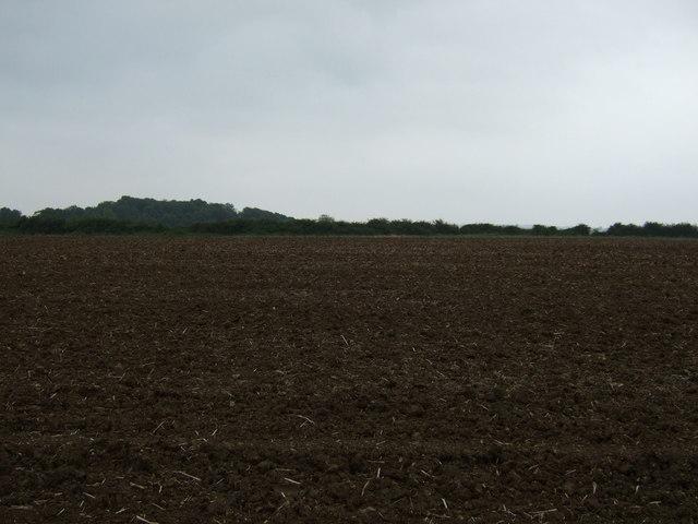 Farmland south of Hawthorn Road