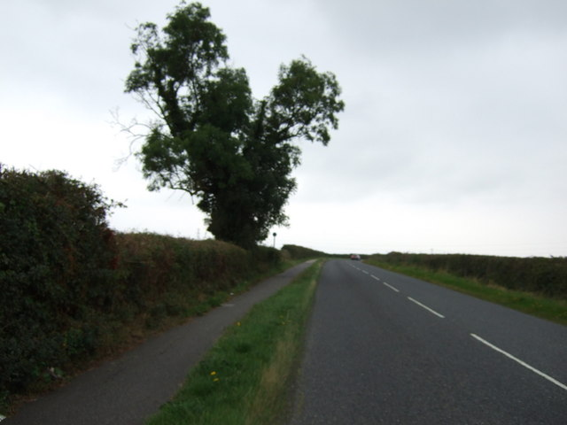 Hawthorn Road