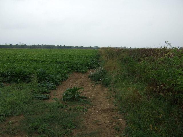 Field entrance off Greetwell Lane