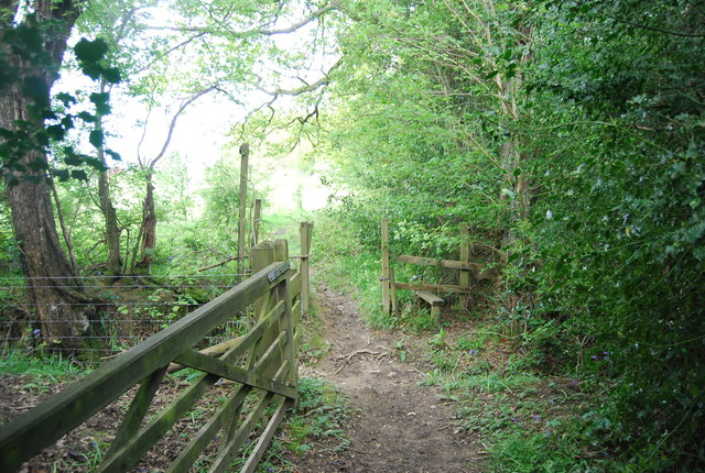 Exiting Sherlock's Wood