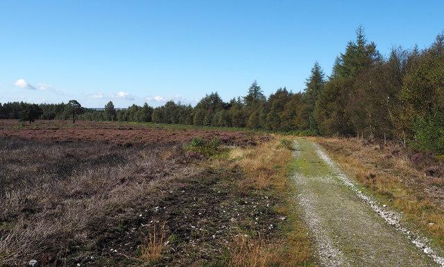Estate road at edge of Rievaulx Moor