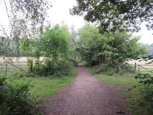 Bridleway to Scotshall Lane
