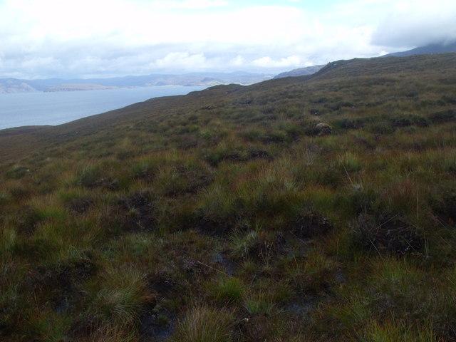 North slope of ridge east of Cnoc Scoraig near Ullapool