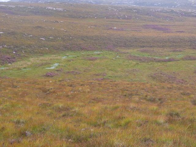 Patch of pasture near Annat on Scoraig peninsula near Ullapool