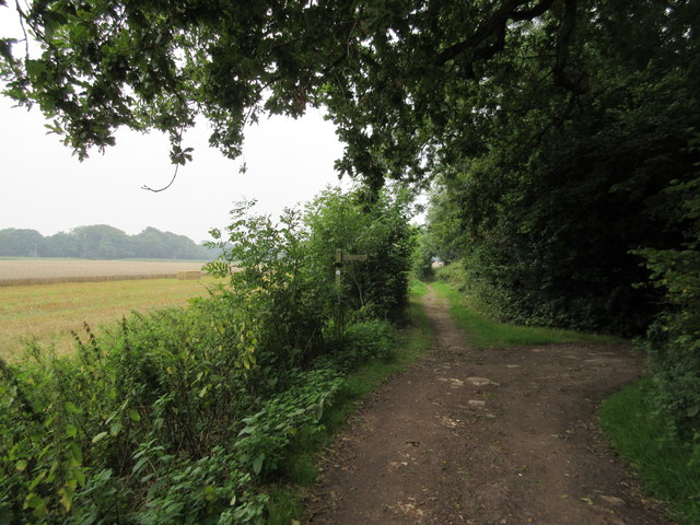 Footpath junction on bridleway near Henley Wood
