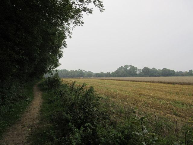 Bridleway to Chelsham