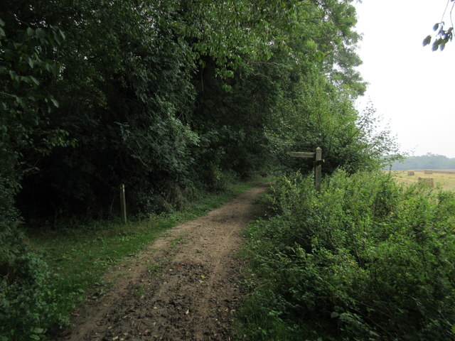 Bridleway and footpath to Chelsham