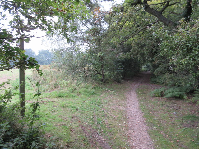 Byway and footpath to Ledgers Road
