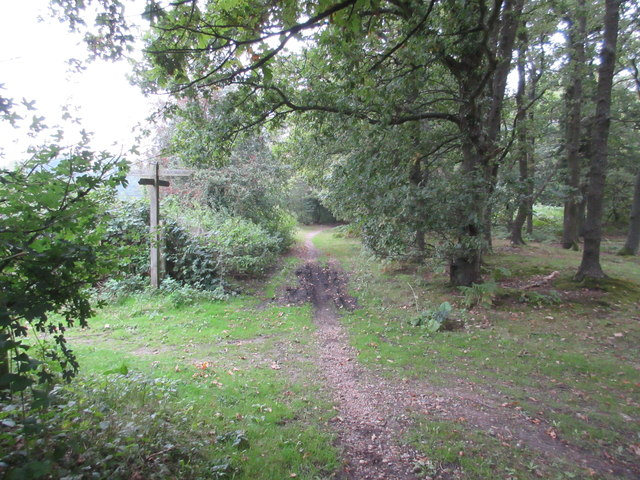 Path junction on byway to Limpsfield Road