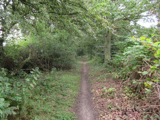 Byway to Ledgers Road
