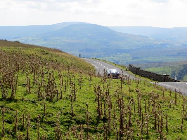 Moorland at Buttertubs