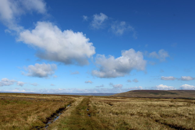 Bridleway heading over Fleensop Moor