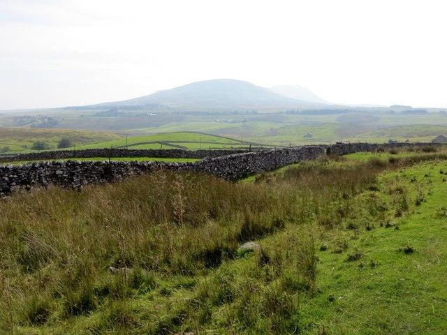 Moorland near Ribblehead
