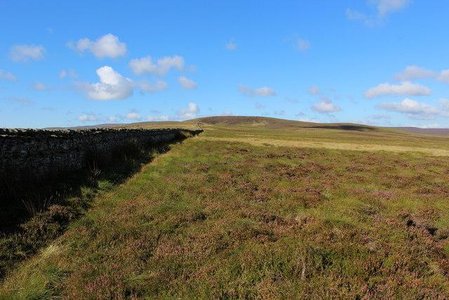 On Braidley Moor near Denman's Hill
