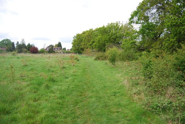 Footpath by Micklepage Farm