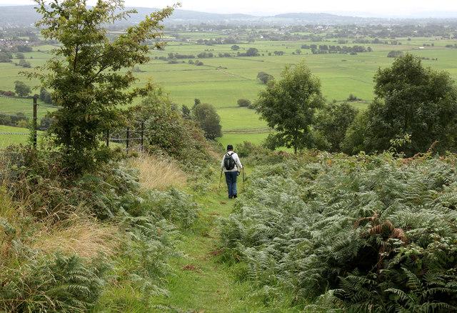 Downhill path near High Wood