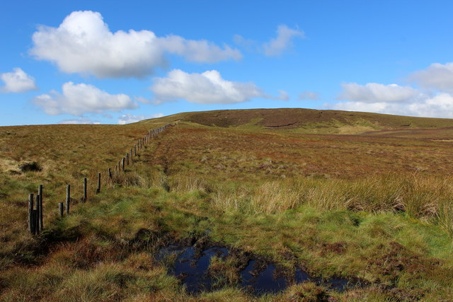On Braidley Moor
