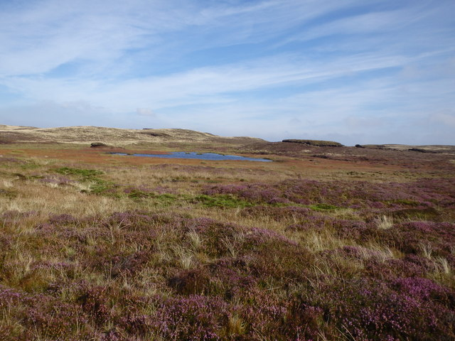 Small Llyn, Near the Source of the Severn