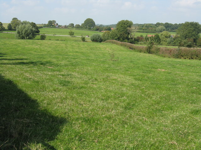 Field at the lane junction