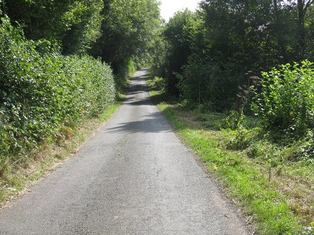 The lane through Hyde Wood