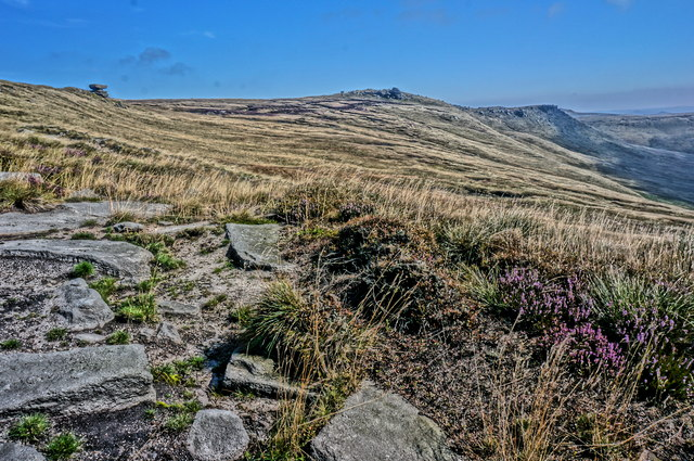 Gritstone, heathers and grasses