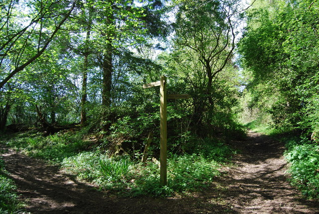 Footpath, Bridleway junction