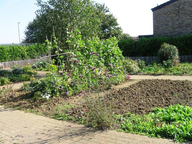 Community Garden on site of demolished garages