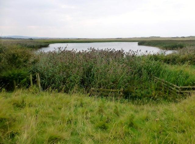 The Lough, Lindisfarne
