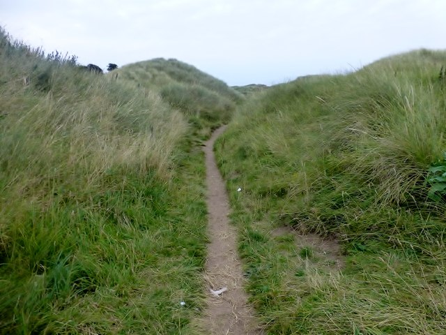 Path To The Dunes On Lindisfarne