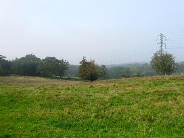 Barn Field (1)