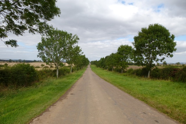 Road to Grindon