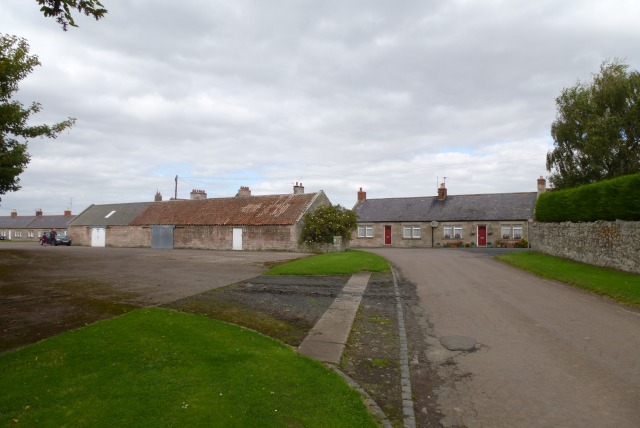 Houses in Grindon