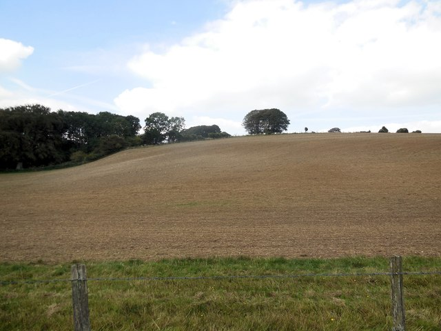 Downland near Bow Hill