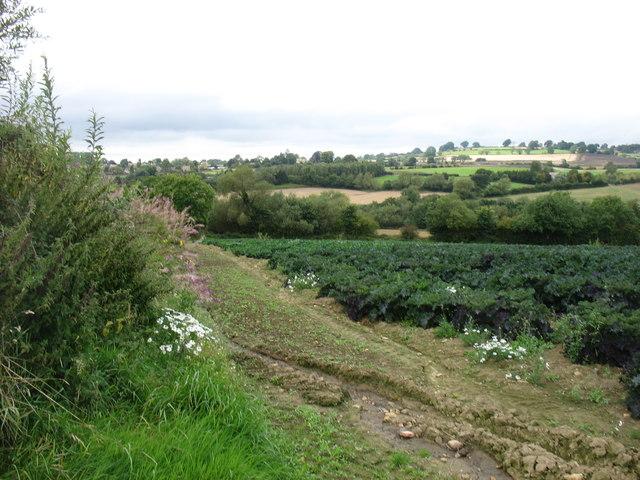 Farmland near Charingworth