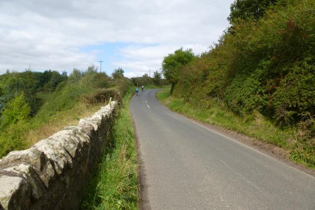 Road near Newbiggin Dean