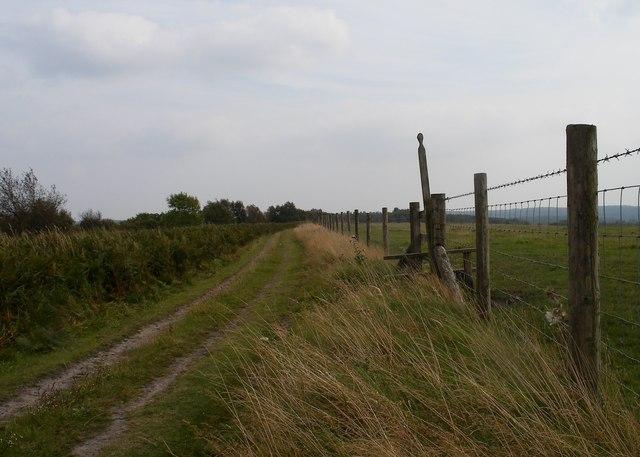 Track, Newgate Brow