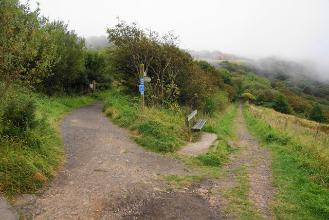Cycle route and path near Ravenscar