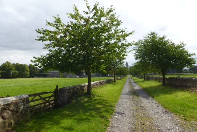Track to the riding school