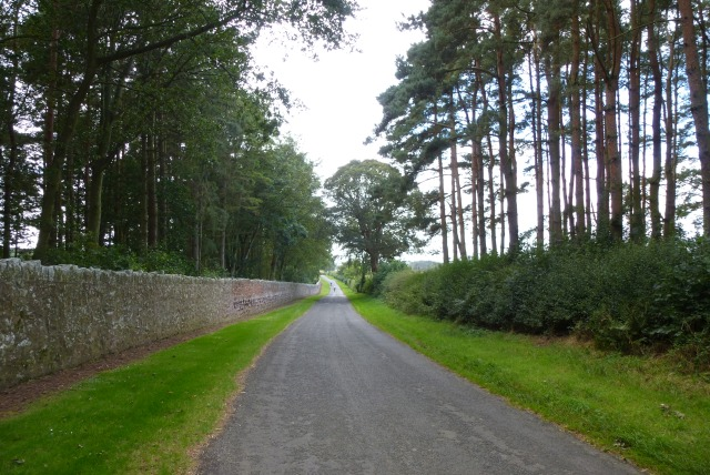 Road from Upsettlington