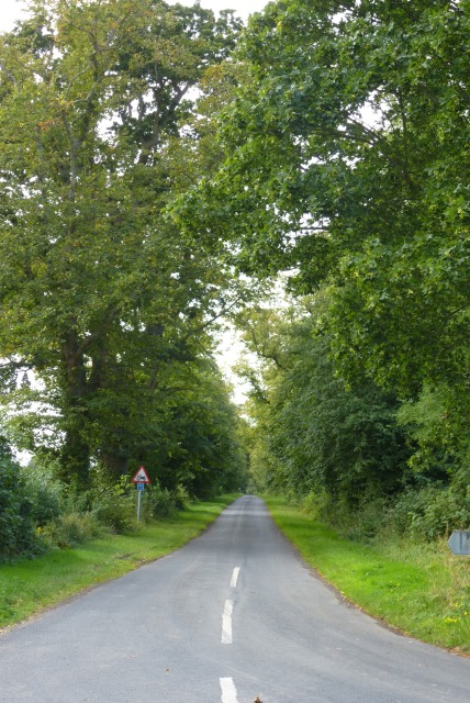 Road from West Lodge