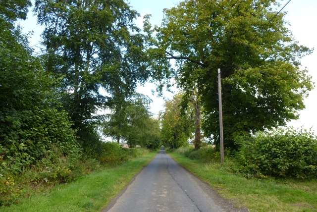 Road near Milne Graden West Mains