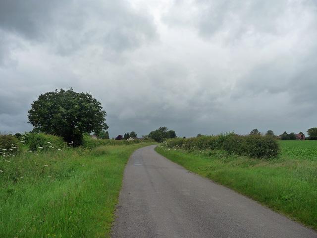 Country road near Hawksworth (1)