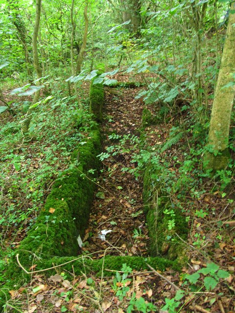 Old sheep dipping trough near Clomendy