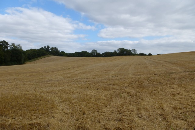 Farmland near Cornhill on Tweed