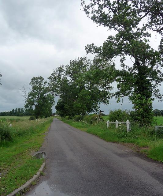 Country road near Hawksworth (2)