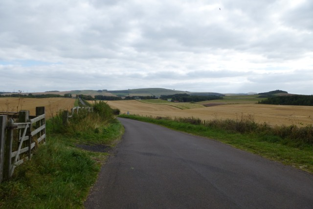 Road from Kippie Hill