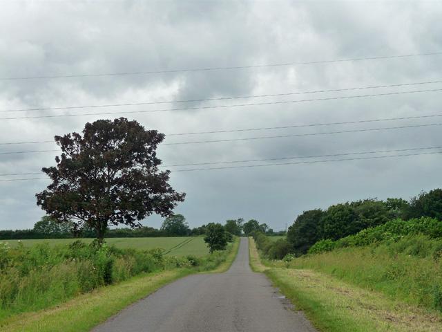 Country road near Thoroton (1)