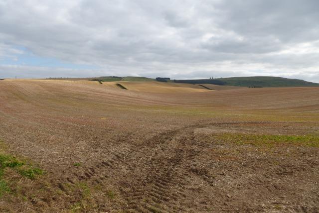 Farmland near Tithe Hill