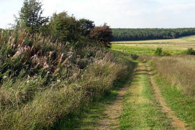 Footpath to Appley Corner